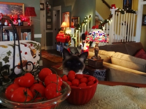 No Mulder, tomatoes aren't decorations, but they do look festive.