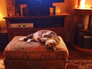 Ahhhhhh...I think I'll settle down for a long nap on my beloved ottoman.