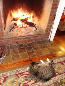 I smell roast kitty!