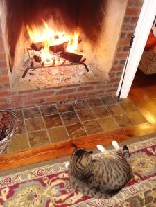 I smell roast kitty!