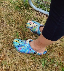 GREATEST...SHOES...EVER!