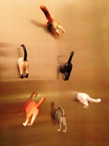 You just can't go wrong with cat-butt magnets.
