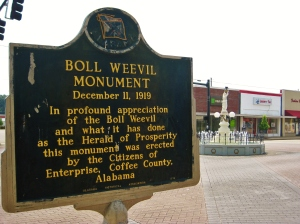 And if someone would please let me know exactly what the boll weevil did for the town of Enterprise in 1919, I would be most grateful.